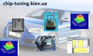 Tuning Engine Chip tuning, DPF, EGR, AdBlue - off, edit the firmware